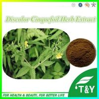 100%Natural Discolor Cinquefoil Herb P.E. . 400g