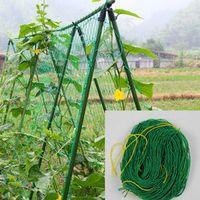 Millipore Ivy Climbing Frame Home Gardening Fruit Plants