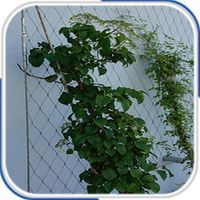 x-tend stainless steel wire rope mesh ferruled type for plant climbing