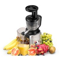 Juicer Slow Extractor Fruit Juice Vegetable Masticating Press Machine New Low