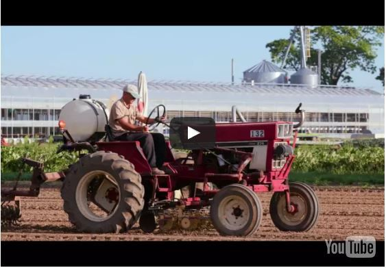 Video of Chef's Garden partners with Verizon to maximize crop growth
