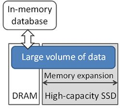 Figure 1. Memory expansion for in-memory database