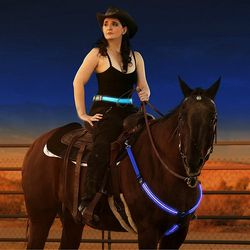 LED Horse Bridle Halter Breastplate Nylon Webbing LED Paard Collar Night Visible Cheval Riding Equipment Horse Riding Equestrian