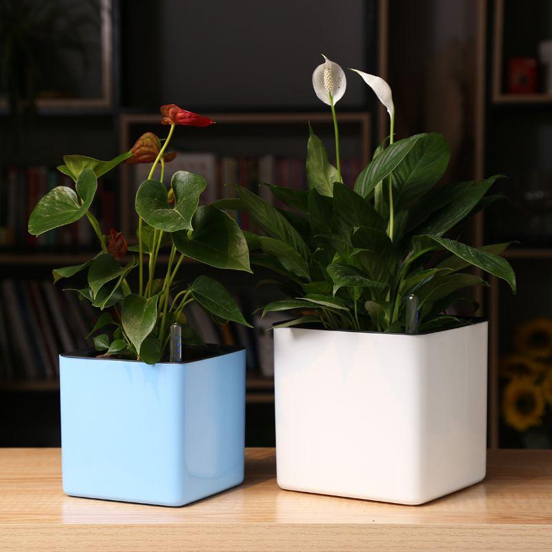 Pot de fleur en plastique de porcelaine personnalisé créatif de l'eau d'absorption automatique de place de Margic de quatre couleurs pour l'usine de graden