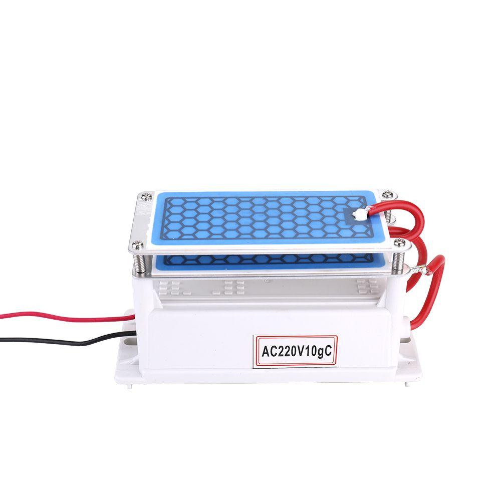 Portable En Céramique Générateur D'ozone 220 v 10g Double Intégré Longue Vie En Céramique Plaque Ozoneur Air Eau Purificateur D'air