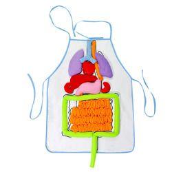 Pendidikan Anak-anak Bib Apron TK Viscera Pengajaran Perkakas Anak-anak Pendidikan Perkembangan Intelektual 3D Organ Apron
