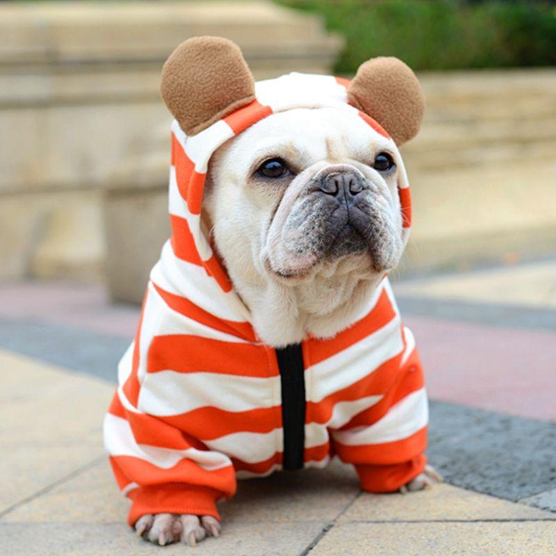 [MPK Shop] Hund Französisch Bulldog Kleidung Orange Streifen mit Reißverschluss, hund Kleidung, Pet Kostüm