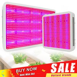 400W 600W 800W 1200W 1600W LED Grow Light Full Spectrum Indoor Growing Light For Greenhouse Plants Vegetables Flowering Fruiting