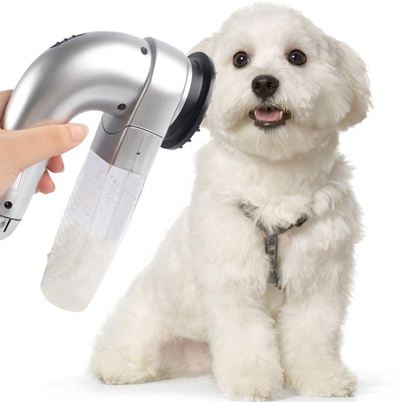 Animal de compagnie épilation sous vide fourrure aspiration toilettage dispositif animaux de compagnie chien accessoires sans fil Portable animaux de compagnie Massage aspirateur