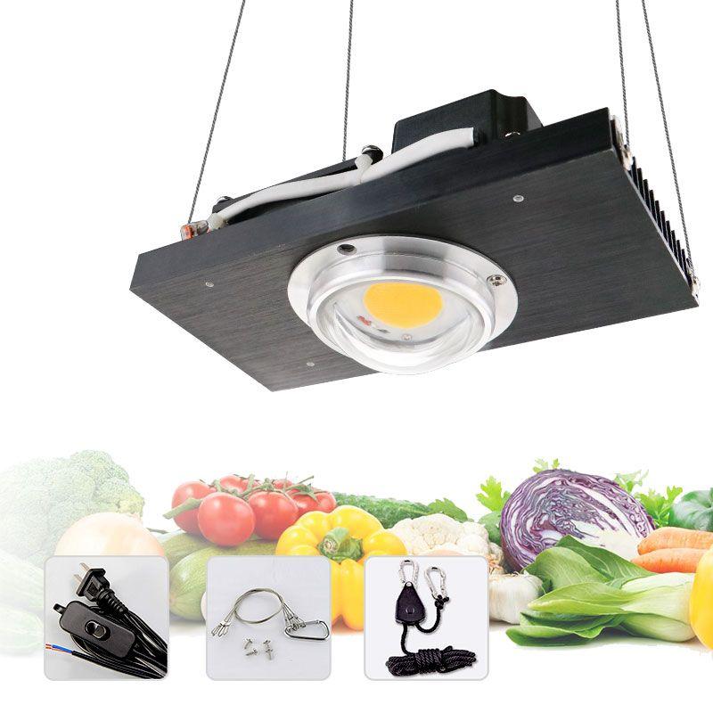 CREE CXB3590 COB LED Wachsen Licht Gesamte Spektrum 100W 200W Citizen LED Anlage Wachsen Lampe für Innen Zelt gewächshäuser Wasserkulturanlage