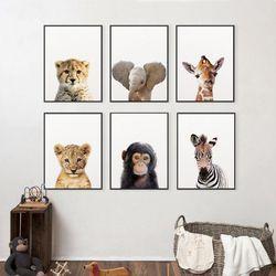 Lion Zèbre Éléphant Girafe Bébé Animaux Art Print Affiche, Safari Animaux Photo Toile Peinture Enfants Décor de Nurserie Mur