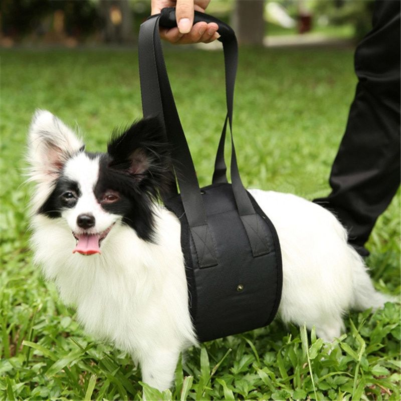 Portable Elderly Disabled Pet Dog Auxiliary Belt Dog Lift Support Go Upstairs Pets Rehabilitation Harness Assist Sling