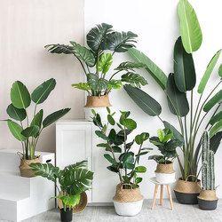 Plantas artificiales tortuga verde hojas jardín decoración 1 ramo mexicano otoño decoración césped Artificial planta