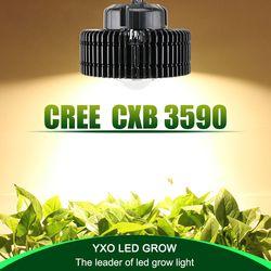 100 W CREE CXB3590 COB espectro completo llevado crece ligero para el invernadero hidropónico de interior crecen tienda comercial plantas medicinales crecimiento