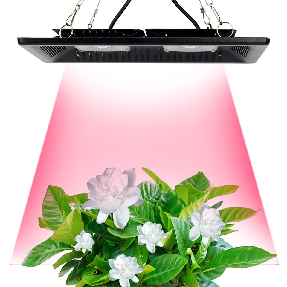 Led Grow Light Full Spectrum 100W 200W Waterproof IP67 COB Grow LED Lamp for Plant Indoor Outdoor Hydroponic Greenhouse Lighting