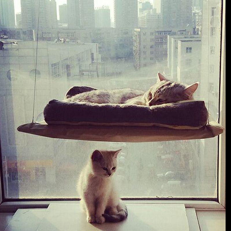 Cat гигантская окна установлен гамак Поддержка 20 кг окунь Подушки постельный подвесная полка сиденье отлично подходит для нескольких кошек ...