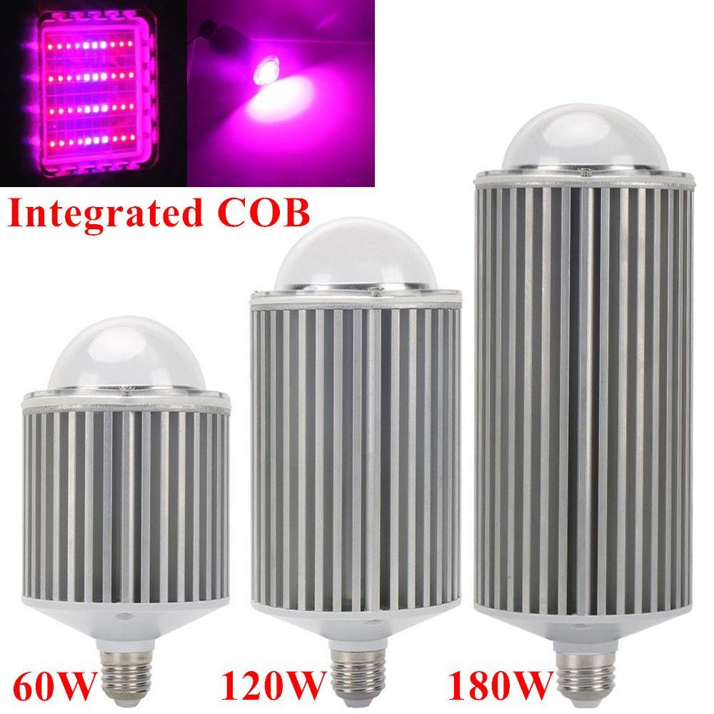 180W 120W 60W E27 spectre complet COB Led élèvent des lumières pour la culture hydroponique fleurs plantes d'intérieur médicales poussent l'éclairage de tente