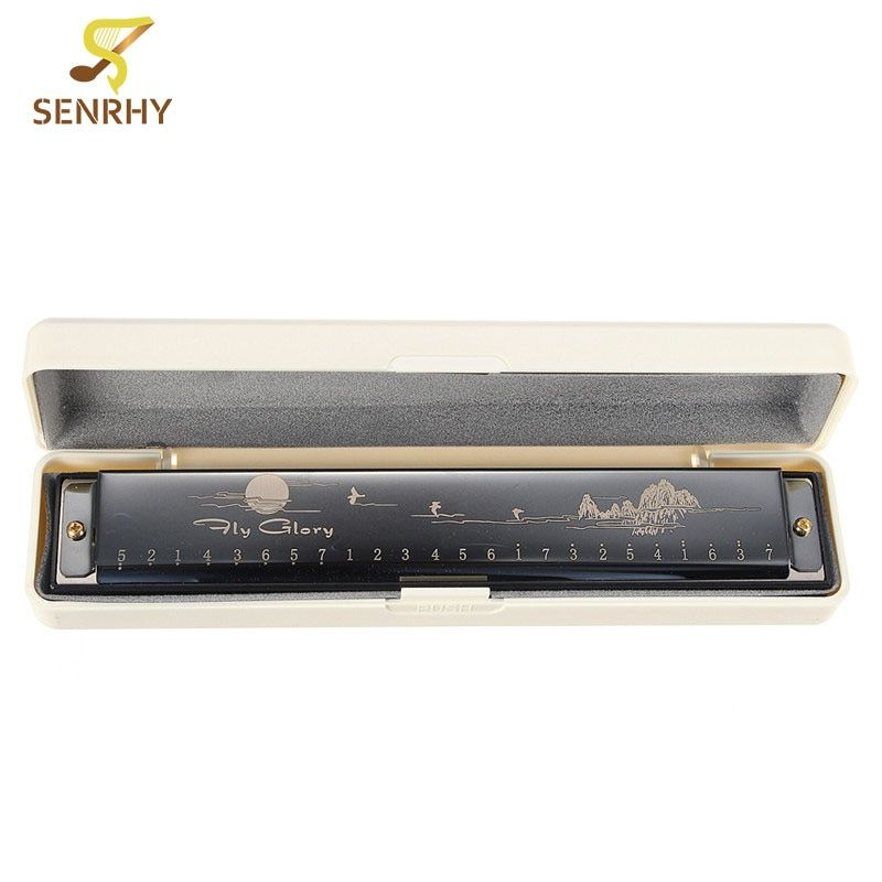 New Arrival Harmonica 24 Holes Key of C with 48 reeds Black Silver Gold for Musical Instruments Harmonica Lovers Gifts Hot