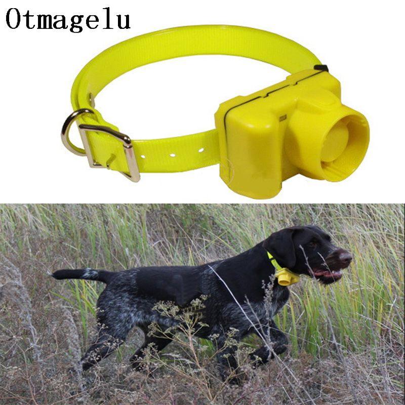 Chien de chasse professionnel Beeper rechargeable collier de dressage de chien étanche équipement de formation de chien collier électrique pour animaux de compagnie bip Clicker