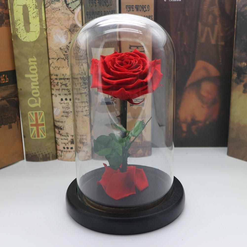 Asypets навсегда розы бессмертный свежие розы в Стекло как День Святого Валентина коллекция уникальные подарки-25