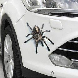 Funny 3D Cartoon Colorful Frogs Spider Feather Car Stickers Decal Vinyl Cover Body Scratched Car Styling Motorcycle Accessories