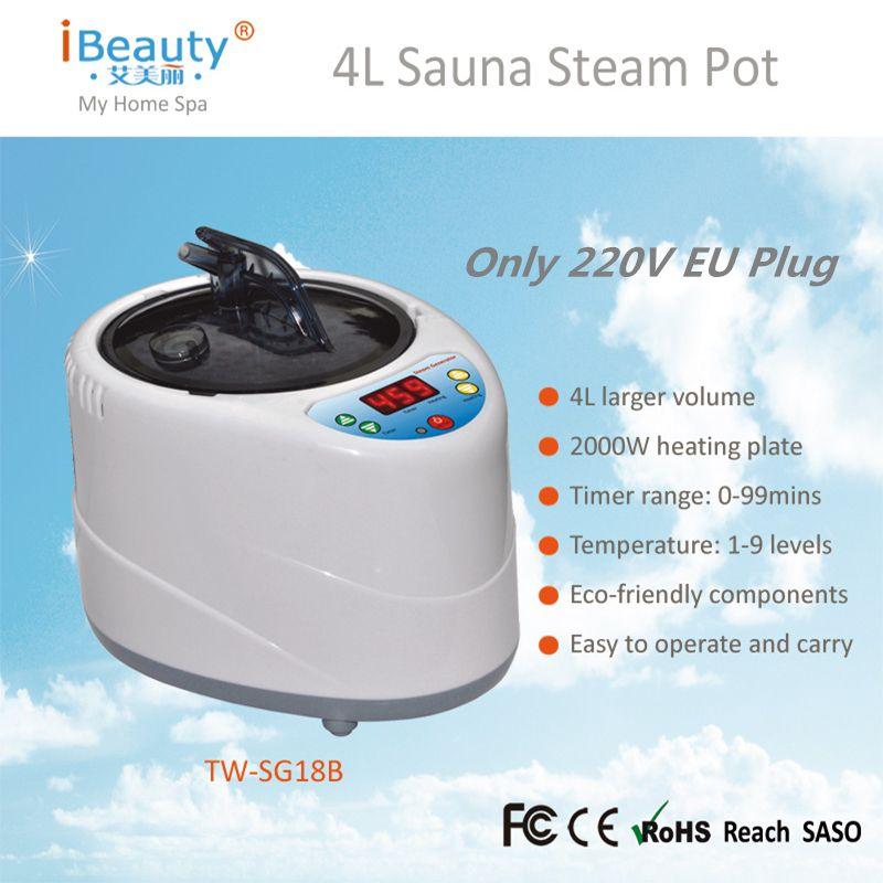 Home Sauna Steam Pot 220V EU/Plug 2000W Larger Capacity 4L Steamer Generator for Steam Sauna Wooden Barrels Large steam