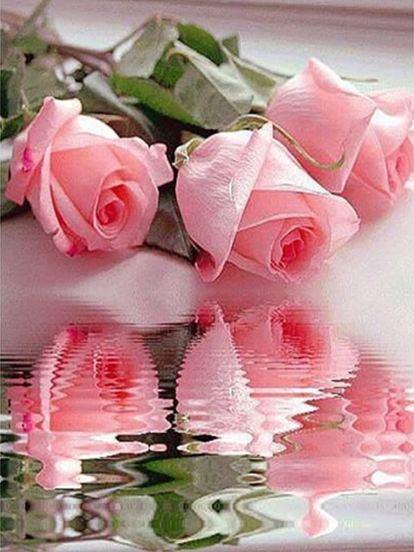 2017 Water three pink roses, home decorations, 5D DIY full diamond inlay, diamond painting, cross stitch gifts