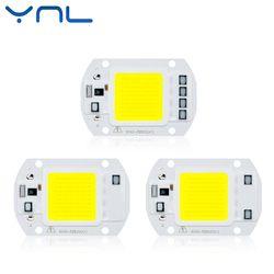 YNL Nyata Daya LED COB Chip 20 W 30 W 50 W LED Lampu Bulb 220 V 240 V Input IP65 Pintar IC Untuk DIY Luar LED Banjir Cahaya chip