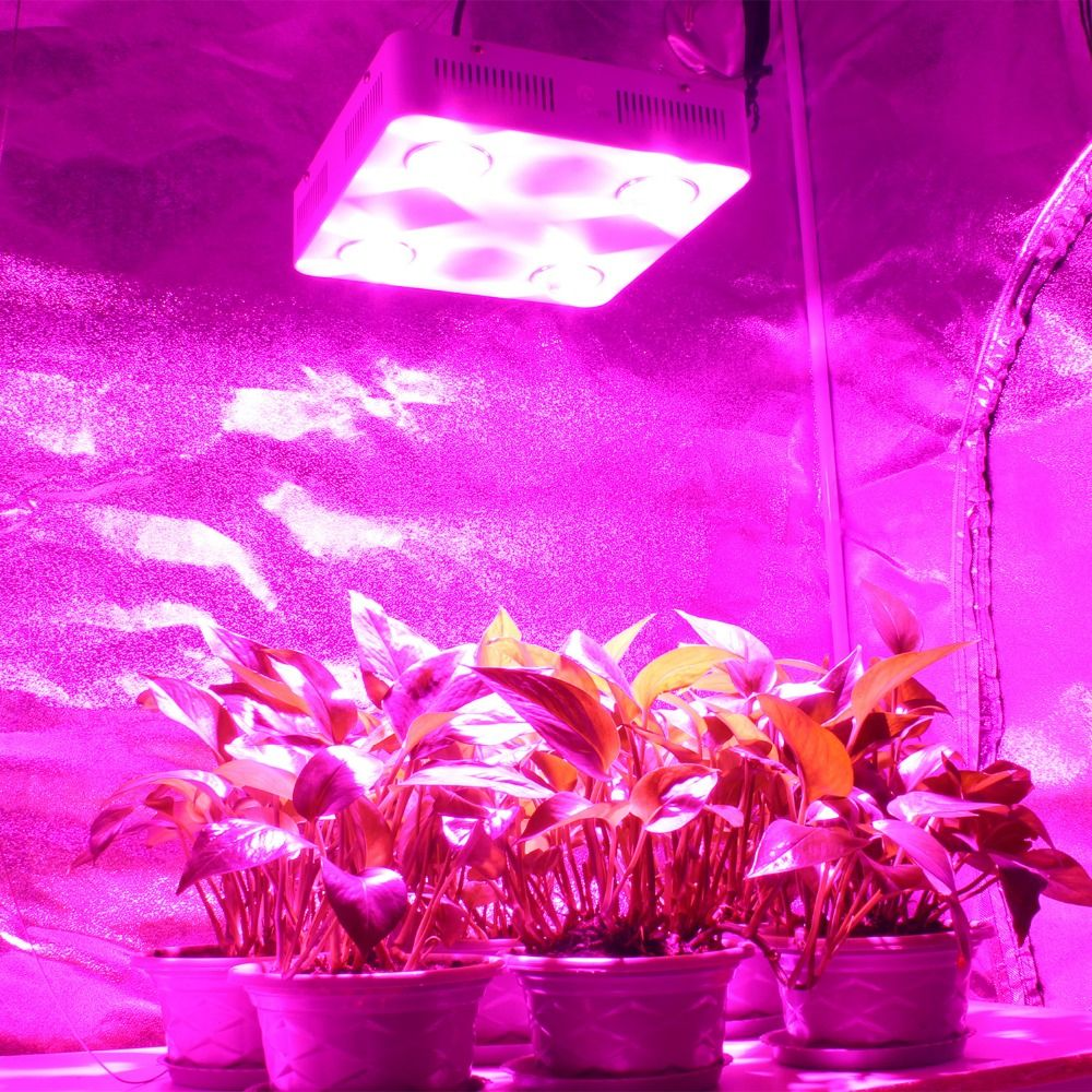 CF Grow 600W COB LED Grow Light Full Spectrum Indoor Hydroponic Greenhouse Plant Growth Lighting Replace UFO Growing Lamp