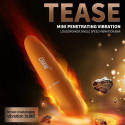 Powerful Female Mini Bullet Vibrator Vaginal G-Spot Clitoris Stimulate Dolphin Vibrating Egg Adults Sex Toys for Women