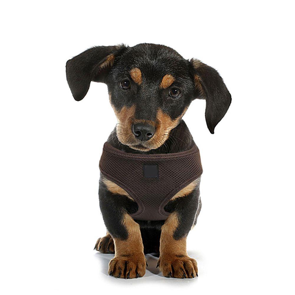 Me traiter, Confortable Chien Harnais, Doux et Mesh Respirant, Chien Poitrine Bretelles, Réglable, Pet Gilet harnais pour Petit Moyen Chiens