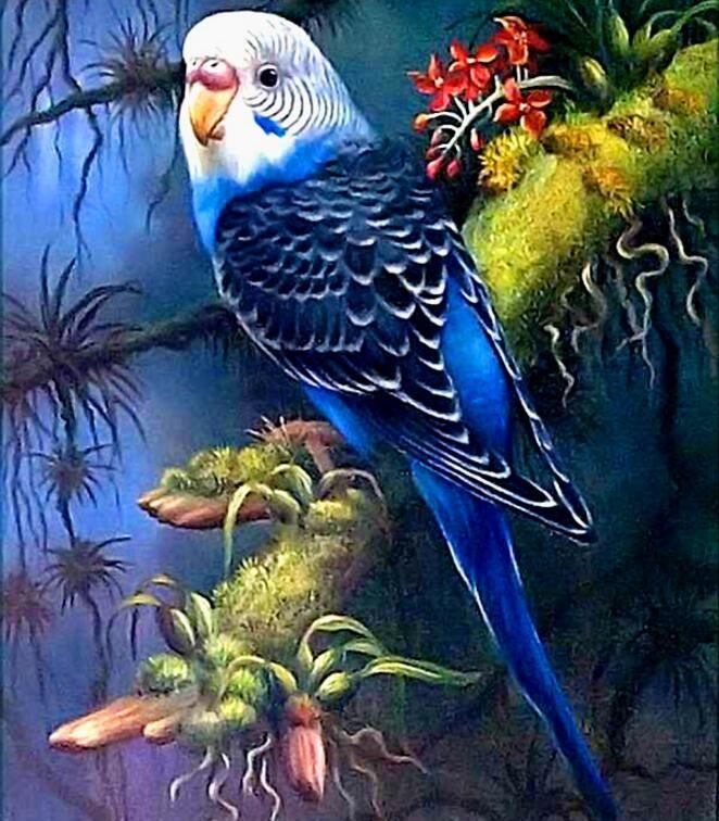 Perroquet de broderie de diamant, plein carré, paquet complet, peinture de strass, diamant 5d, animaux, oiseaux de peinture de diamant