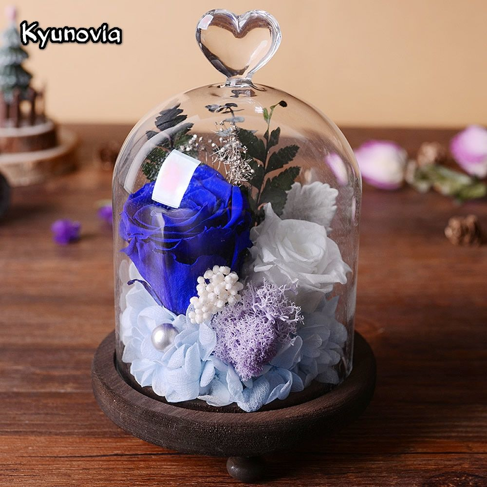 Kyunovia Natural Real Rose Flower Preserved Fresh Flowers Valentine's Day Birthday Gifts With Box Home Decoration KY118