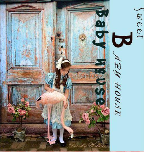 5X7FT personnaliser les décors de photographie en vinyle mince impression numérique arrière-plan photo vieille porte pour studio photo bg-369