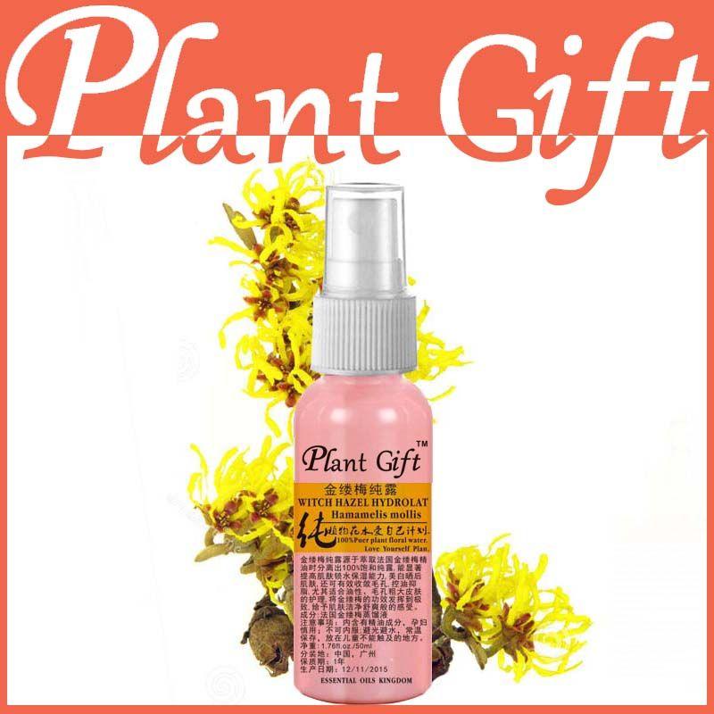 50 ml Organique Hydrolat D'hamamélis Hamamélis Extrait 100% Naturel Plante Fleur Anti-allergie Acné Rides Soins de La Peau Hydrolat