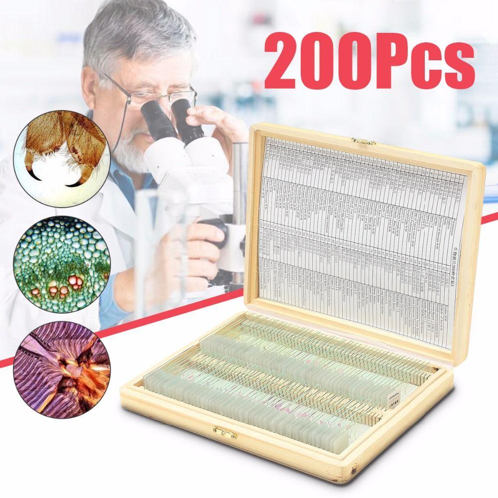 Biologie 200 STÜCKE Vorbereitet Biologische Grundlagenforschung Mikroskop Glas Schule und Labor Englischen Label Lehre Proben