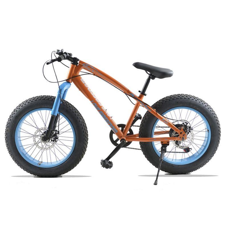 Fat Bike 20X4.0 Bicycle Mountain bike 7 speed Front and Rear Mechanical Disc Brake Hard Frame Unisex Snow bike
