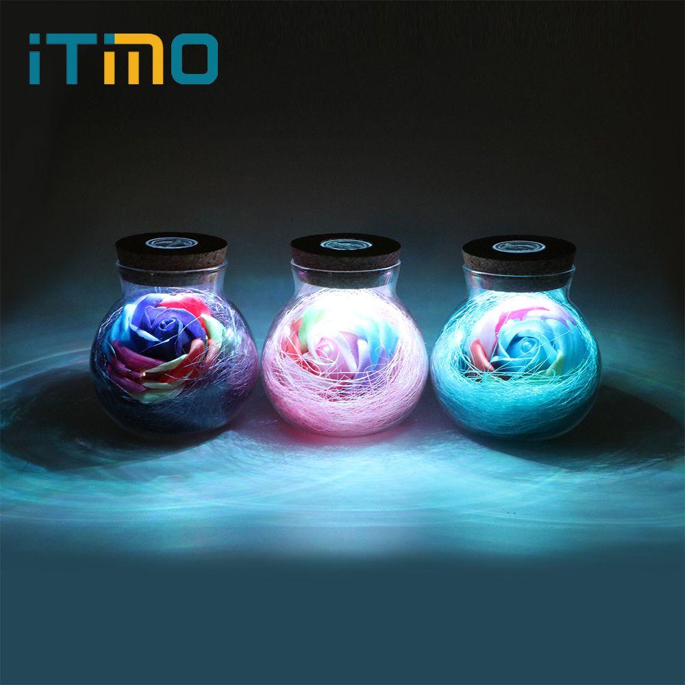 ITimo LED Romantique Ampoule RGB Gradateur Lampe Rose Fleur Bouteille Lumière avec Télécommande Lumière de Nuit Pour Maman Dame Fille D'anniversaire Cadeau