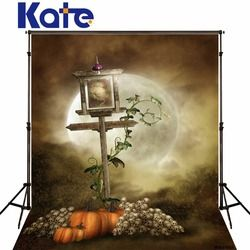 Kate The Moonlight Photo Backgrounds Halloween Theme Pumpkin Skeleton Signposts Outdoor Photography backdrops for Children