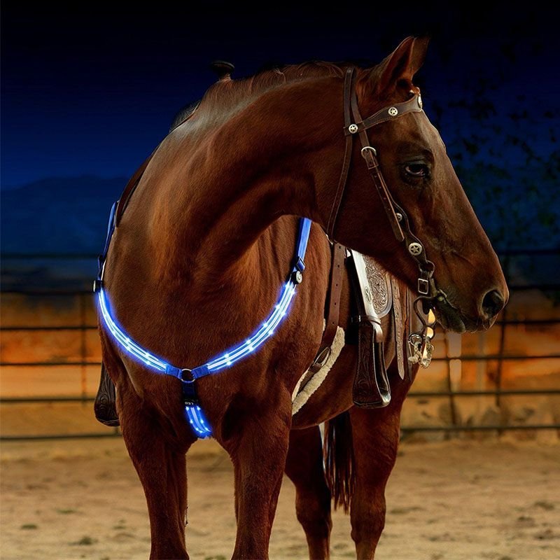 LED Harnais De Cheval Cuirasse Nylon Sangle Nuit Visible Cheval Matériel D'équitation Paardensport Racing Cheval Équitation