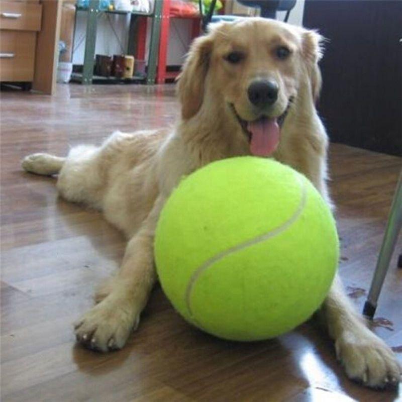 24 CM Pelota De Tenis Gigante Para Perro Masticar Juguete Inflable Grande Pelota de tenis Firma Mega Jumbo perro Juguetes Para Mascotas Suministros Al Aire Libre grillo