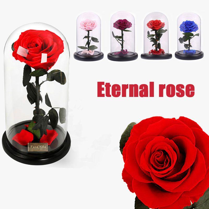 Couvercle en verre Frais Conservés Rose Fleur Barbelé Rose Flores Pour Le Mariage Mariage Accueil Party Decoration Cadeau du Jour de Valentine