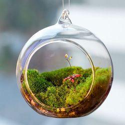 Terarium Bola Dunia Bentuk Jelas Menggantung Kaca Vas Bunga Tanaman Wadah Ornamen Mikro Lanskap Diy Pernikahan Rumah Dekorasi