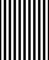 LIFE MAGIC BOX 150X200Cm Vinyl Backdrops For Photography Black And White Vertical Stripes Photo Background Cm-5686