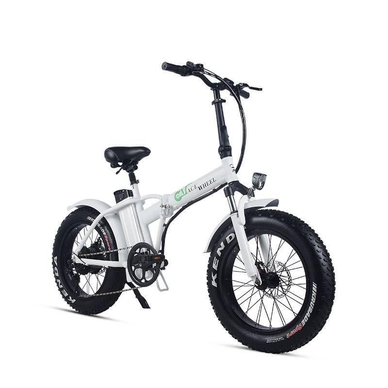 20 zoll elektrische schnee fahrrad 48 V lithium elektrische fahrrad 500 w hinten rad motor fett ebike max geschwindigkeit 40 -50 km/h mountainbike