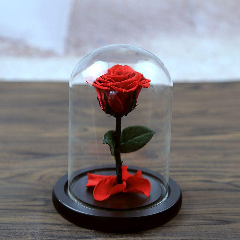 5 цветов Красивая Стекло крышка свежий сохранились Роза свадебный дом День рождения украшения автомобиля