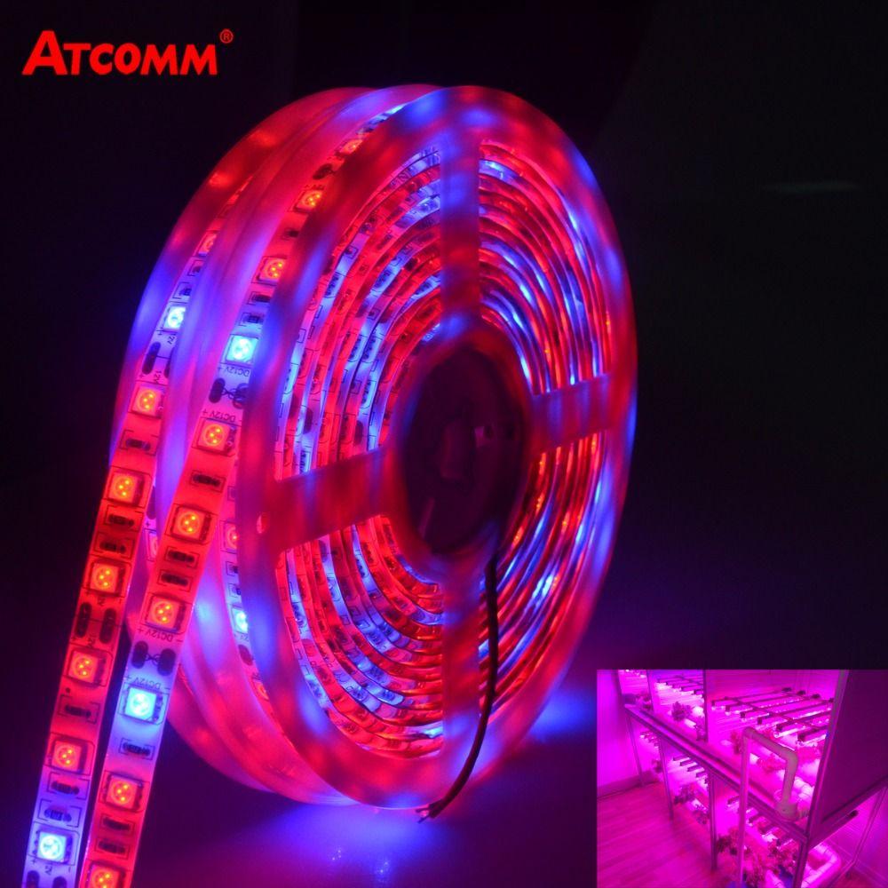 LED Phyto Lamp Strip Light SMD 5050 5 Meters Full Spectrum Grow Lights DC 12V Fitolampy Bulbs For Plants Seeds Flower Lighting