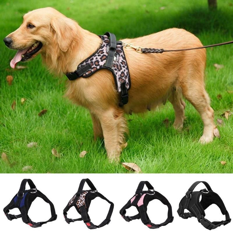 Durable Pet Harness Weste für Small Medium Large Hunde Atmungs Walking Training Brustgurt Harness Für Husky Alaskan Bulldog