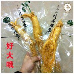 Chang Bai Segar Akar Ginseng 300G Kelas Atas Vacuum Pack Akar Ginseng Panax 8 Tahun Herbal Perawatan Kulit kecantikan Menggunakan