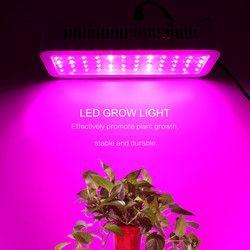 ANBLUB LED crece la luz 1000 W 600 W 400 W 200 W 100 W espectro completo lámpara de crecimiento para hidroponía y plantas de interior invernadero flores
